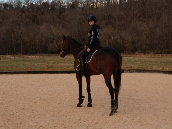 Taking a break - after our flatwork, before jumping!