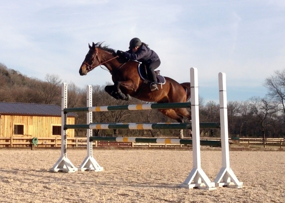 Jumping a 4'6 oxer!