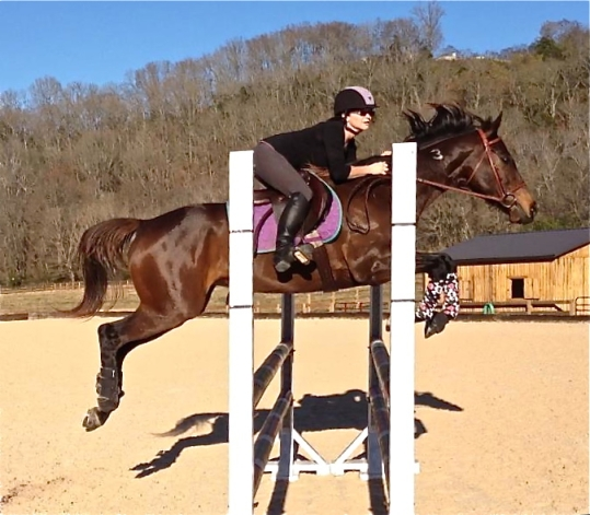 Jumping an oxer that is 3 feet and 6 inches high