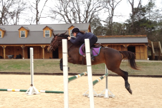 That's me jumping the oxer at about three feet high.