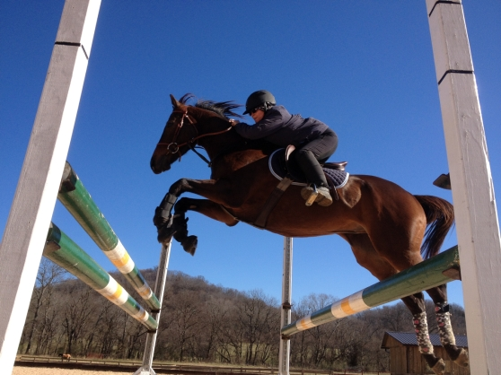 Warming up over a small oxer with a five foot spread. See how the two jumps are five feet apart, but I'm still jumping them as one?