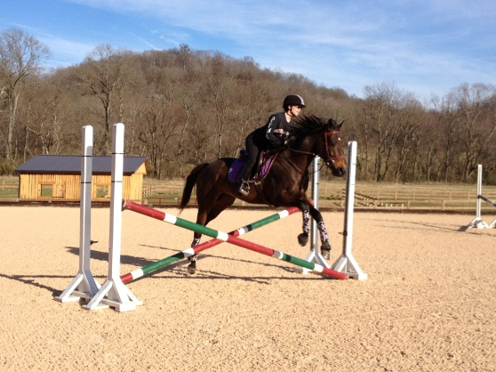 Warming up over a little cross-rail-oxer.