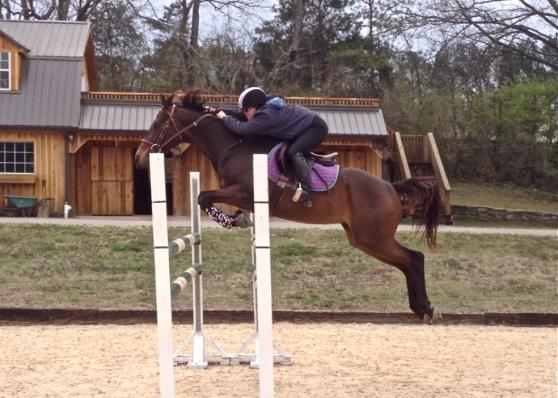 Woo hoo! Jumping a course at 4'3!