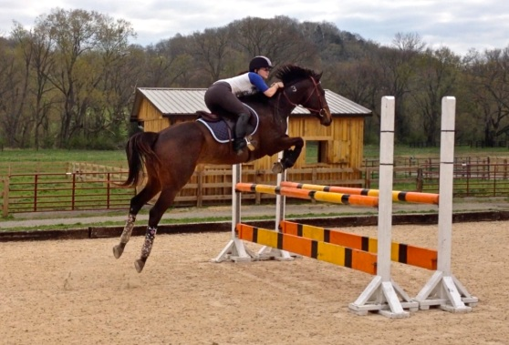 No matter how tired I am, I always LOVE jumping!